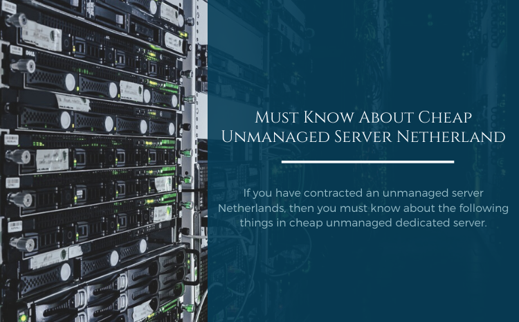 unmanaged server Netherlands